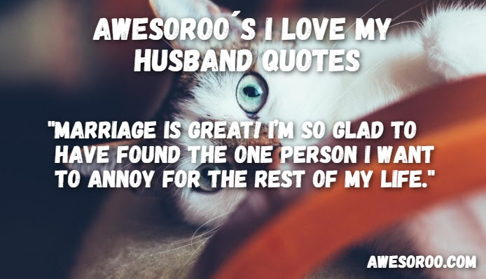 159 Awesome I Love My Husband Quotes With Images Feb 2018