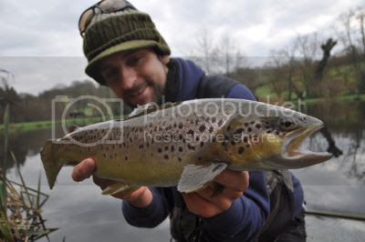 photo DSC_0160_zpseb2fcf7c.jpg