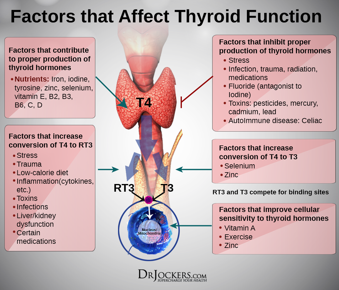 THYROID_AffectingFactors