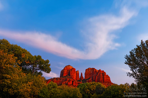 Cirrus Cloud over Cathedral Rock, Sedona, Arizona