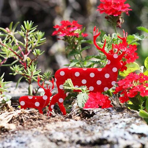 red deers2
