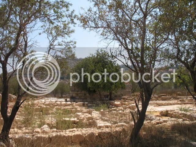 Tel Shiloh, Mid-Summer