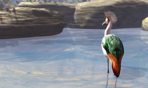 Where's Dim Sum? #123 - Crowned crane