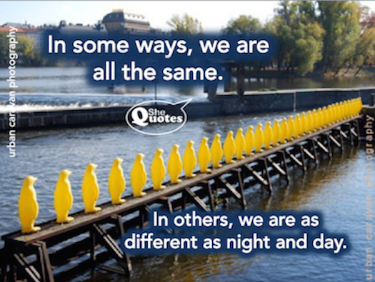 Shequotes Shequotes On Our Similarities And Differences Quote