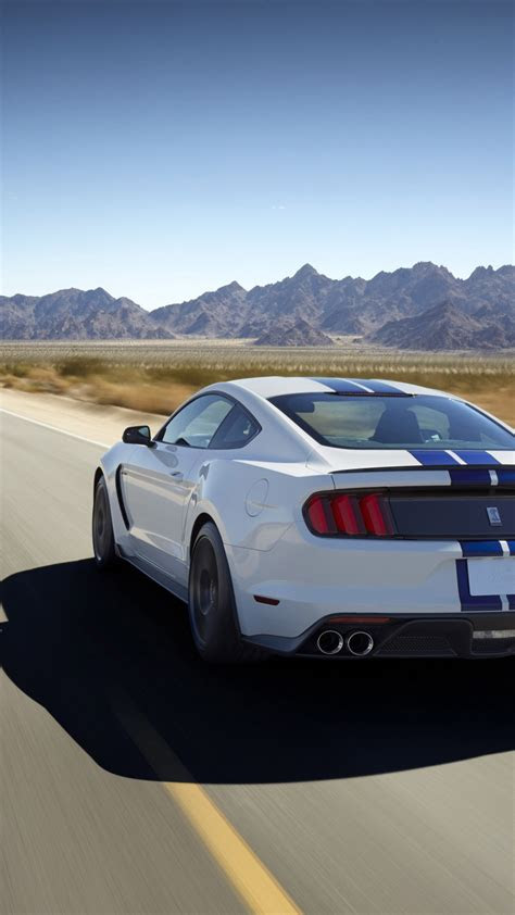 wallpaper ford mustang shelby gt shelby gt