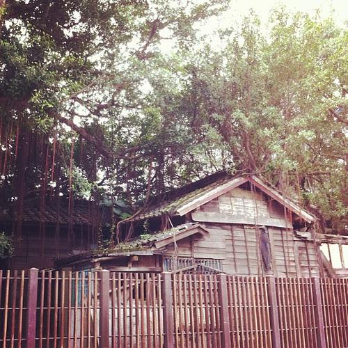 捷運圓山站旁的日式老房子