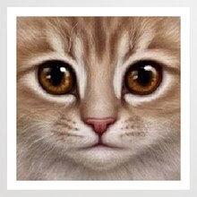Yuumlz Boyama Kedi Yorumlar Online Alışveriş Yuumlz Boyama