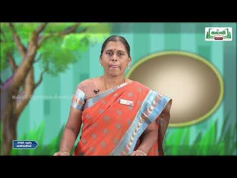 12th Commerce சுற்றுச்சூழல் காரணிகள் பகுதி 2 Kalvi TV