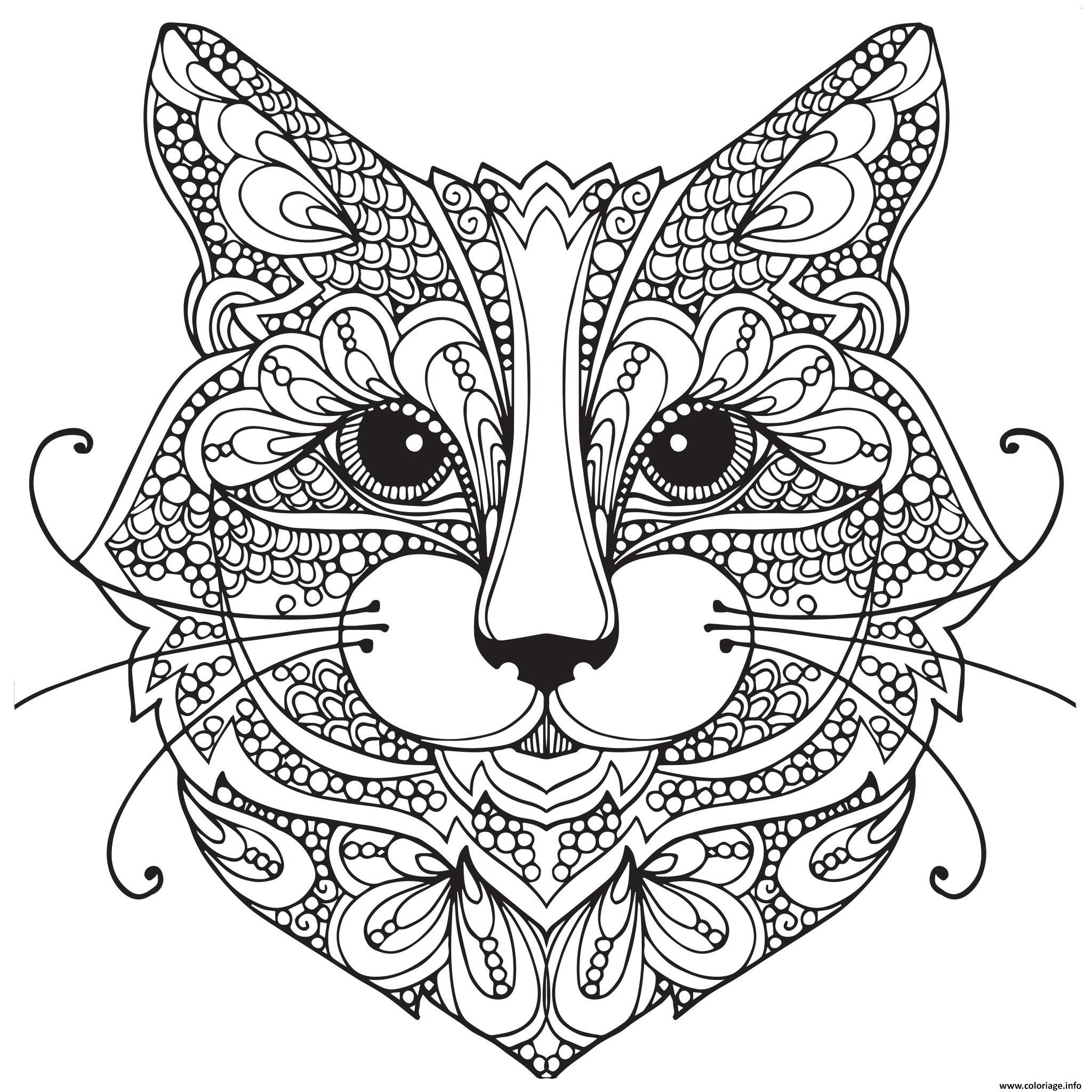 Coloriage chat adulte difficile visage mandala