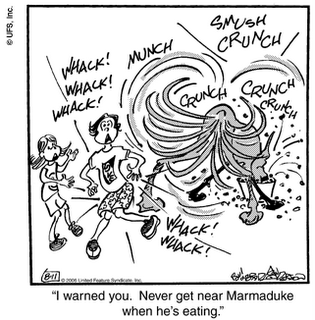Marmaduke Becomes Whirling Dervish Of