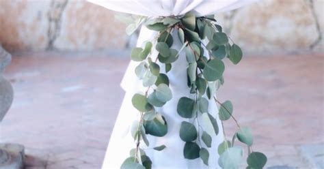 Eucalyptus cocktail table ties are such a lovely element