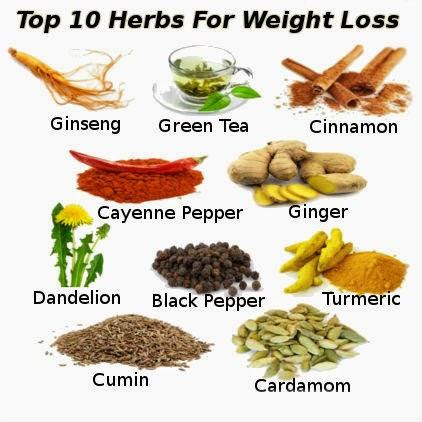 Natural Weight Loss Herbs - Paperblog