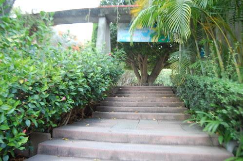 Escaleras Ixtapan