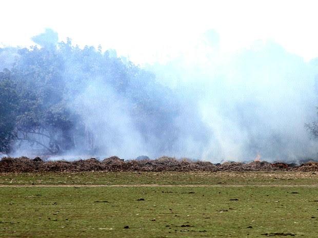 Foco de queimada em Santa Helena (MA), no norte do Estado (Foto: Biaman Prado/O Estado/Arquivo)