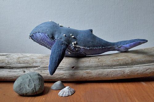 humpback whale no. 14