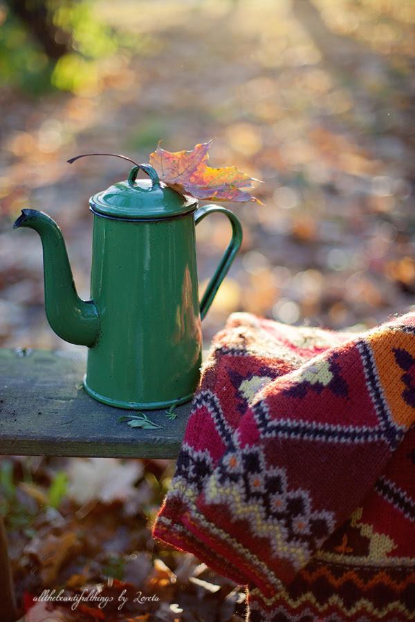 Cozy Autumn