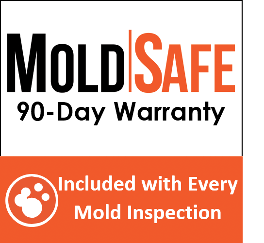 Mold Inspection Four Walls Inspections Serving the Atlanta Metro