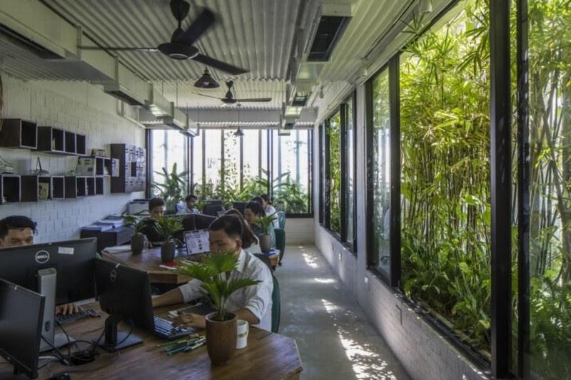 Văn phòng xanh mát
