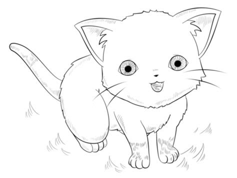 anime cat coloring page  printable coloring pages
