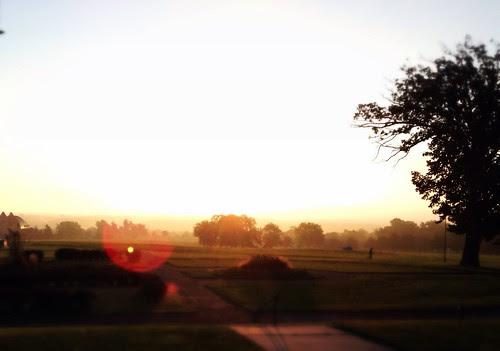 Morn in'