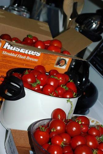 2009-08-31 Making Sauce (3)
