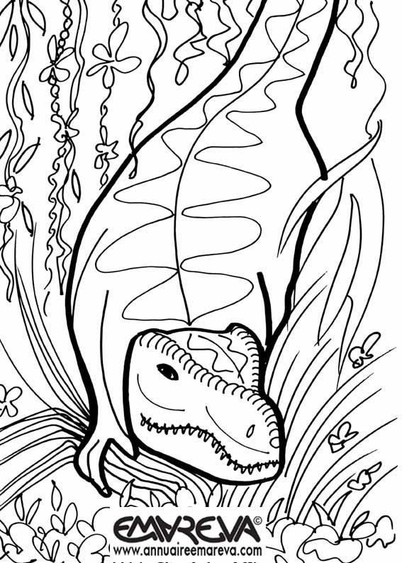 204 Dessins De Coloriage Dinosaure à Imprimer Sur Laguerchecom Page 6