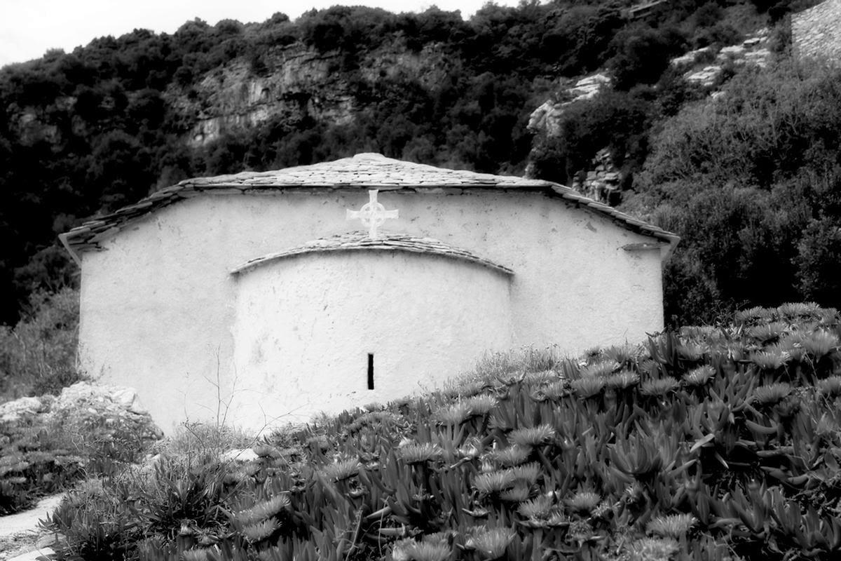 terrapapers.com theologikoi grifoi (2)