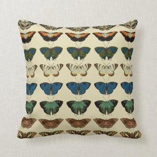 Large Butterfly Collection Pillow