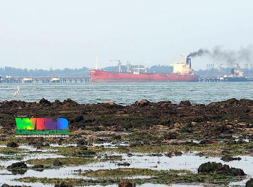 Ship spewing black smoke