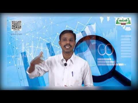 11th Statistics பாடம் 2 பகுதி 2 Kalvi TV