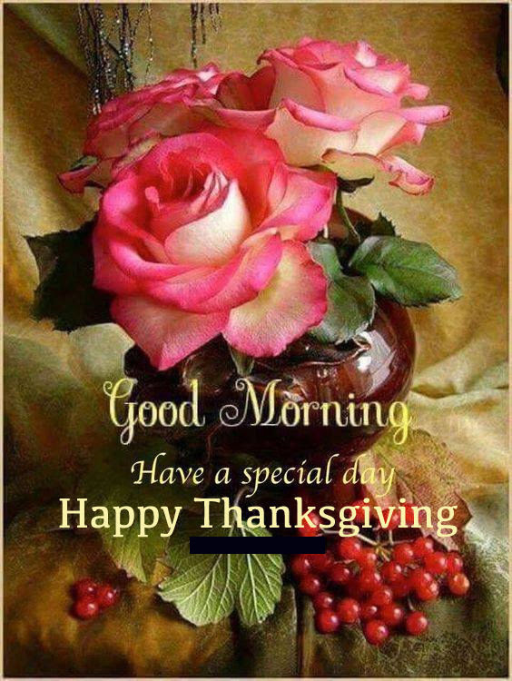 Special Good Morning Happy Thanksgiving Quote Pictures Photos And