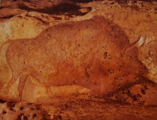 DSC04482