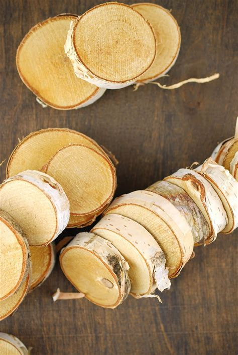 "24 Birch Tree Round Pieces 1.5""  2.75"""