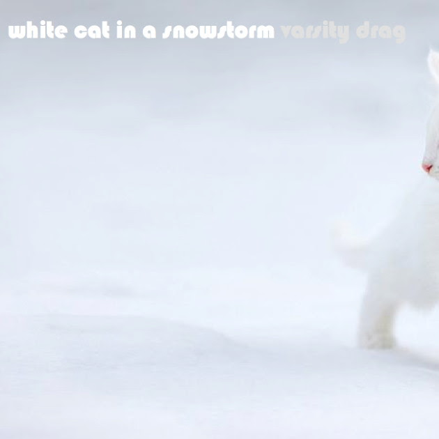 whitecatart