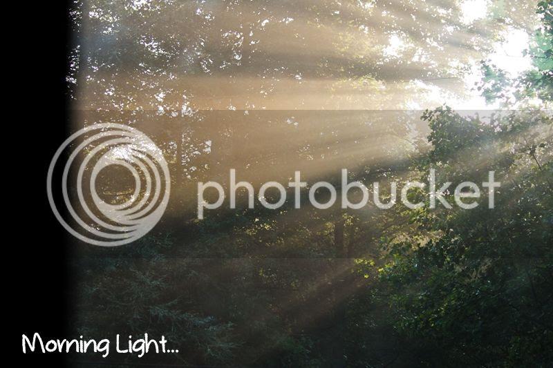 photo morninglight_zps6f954b6f.jpg