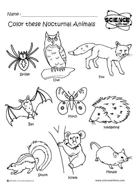 images  forest animals habitats theme