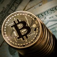 cumpărați piese pc cu bitcoin urmați bitcoin