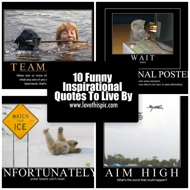 10 Funny Inspirational Quotes To Live By