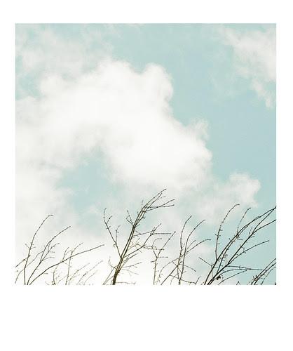 [46/365] hello, mr. blue sky.