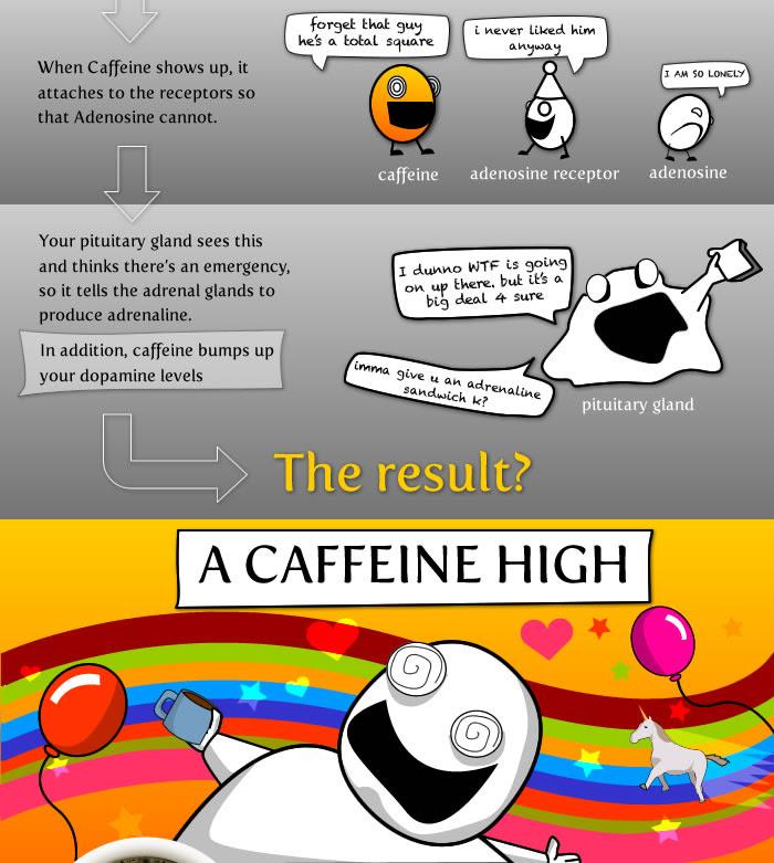 http://theoatmeal.com/img/comics/coffee/9.jpg