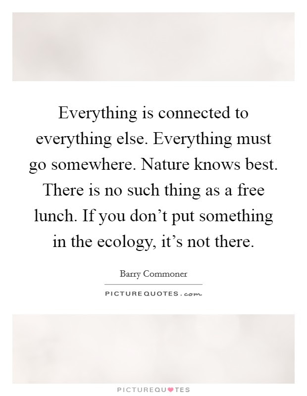 Everything Is Connected To Everything Else Everything Must Go