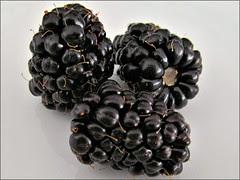 Marionberries, close up