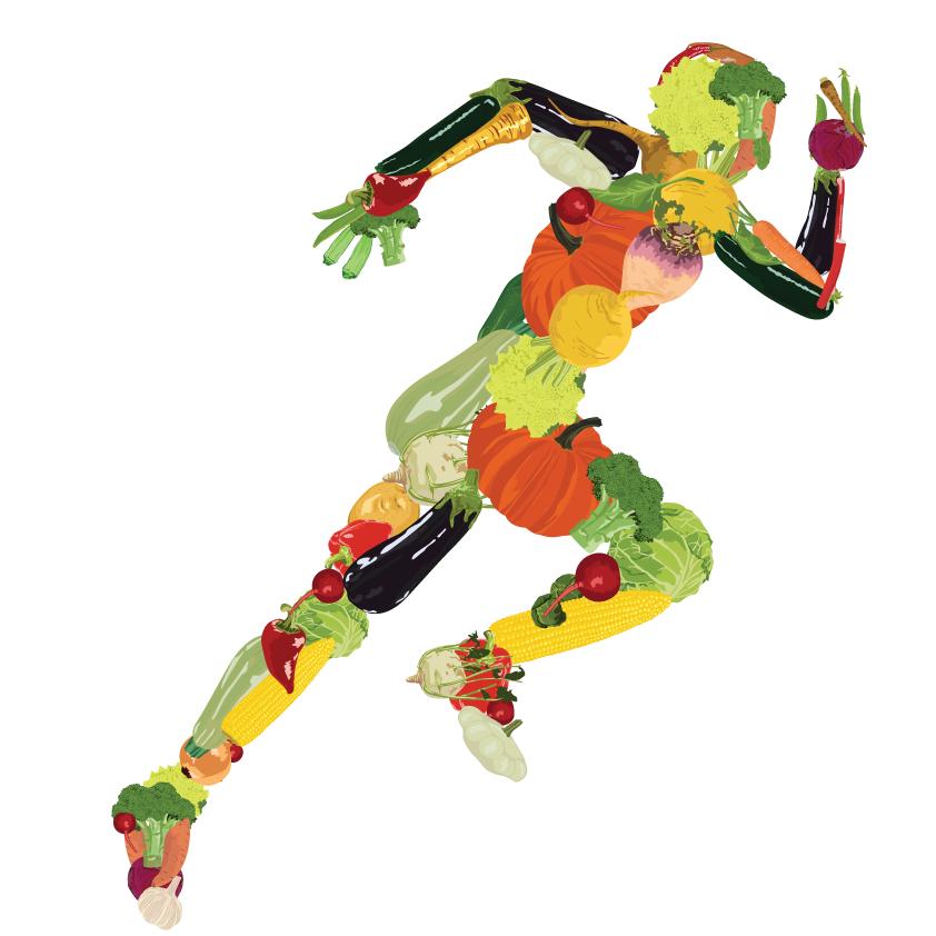 body fat percentage in female athletes