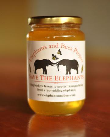 Honey Jar (cropped s)