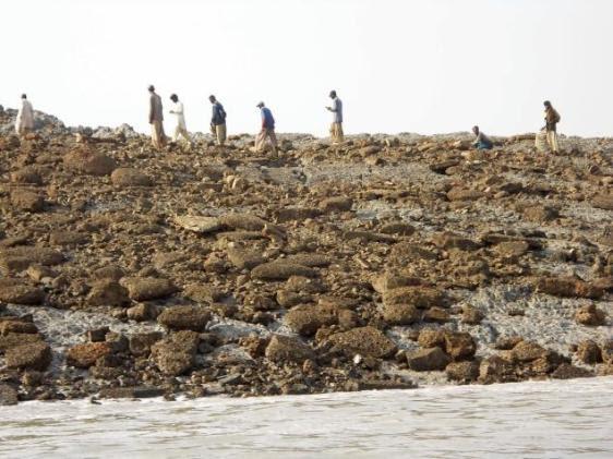 Paquistaneses na nova ilha