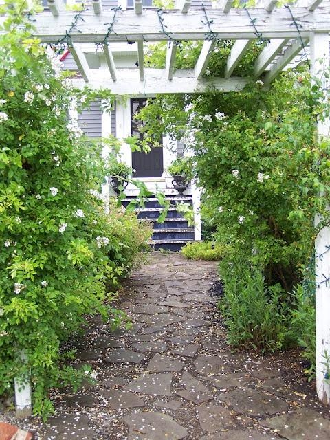 Arbor House Lane...paths