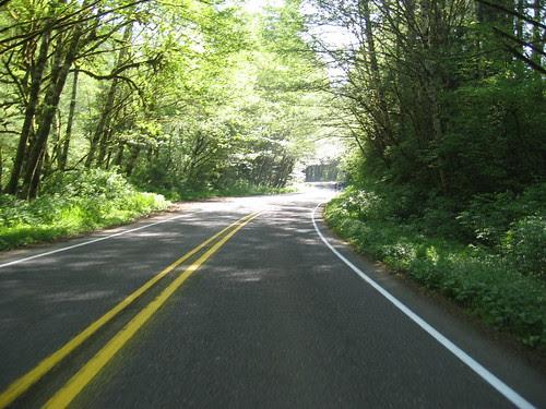 climbing Little Nestucca Road