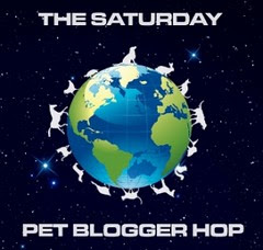 pet blogger hop badge