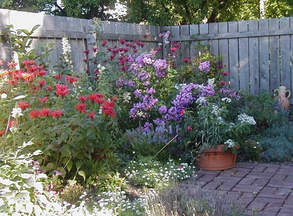Explore Cornell  Home Gardening Flower Garden Design Basics Pictures Native