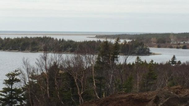 The view from part of what Wayne MacIsaac believes to be a Norse settlement, looking out on a sandbar where a boat that may be of Norse origin was found by locals more than a century ago.